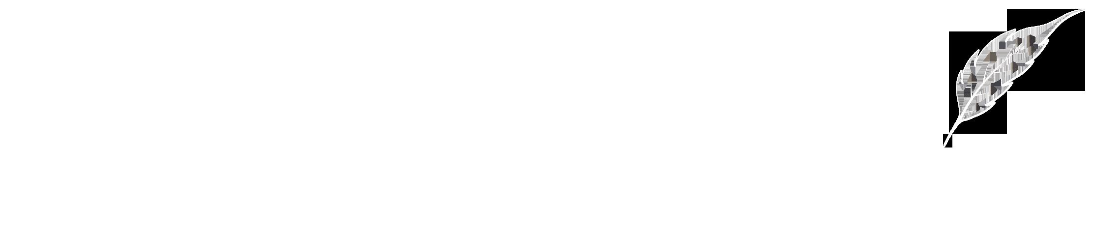 Joshua Sandefur